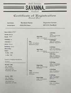 EOES F29 Comet Registration