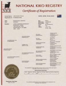 JWB Raven Track Registration