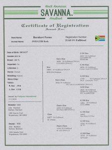 JWB G33B Rock Registration